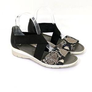 Ara Larissa Black Taupe Snakeskin Leather Sandals